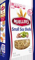 sea-shells-small